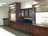 Laboratory Casework with Steel Hood