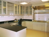 laboratory casework with chemical fume hood